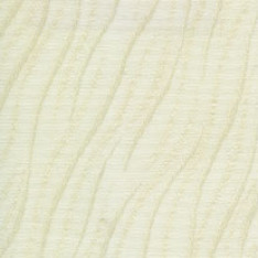 Wimbourne Vanilla