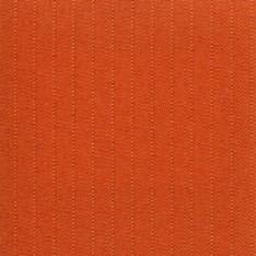 Henshaw Coral